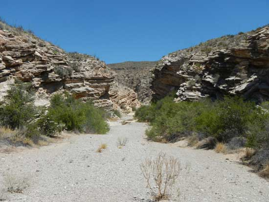 The trail descends into a shallow canyon.