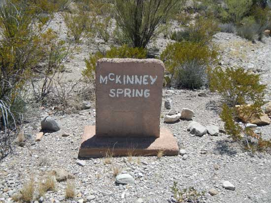 McKinney Spring Campsite