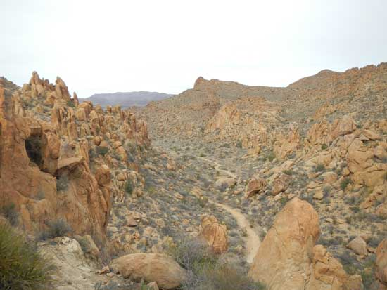 Grapevine Hills Trail From The Top