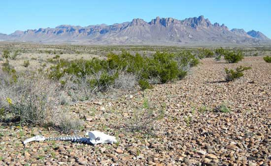 desert-hiking-clothes