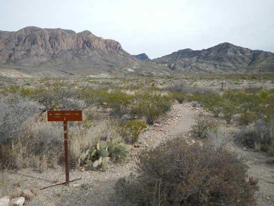 Beginning Ward Spring Trail