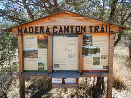 Madera Canyon Trail