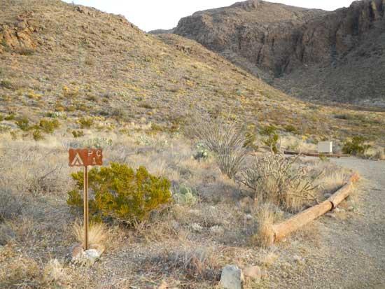 Pine Canyon Campsite 1
