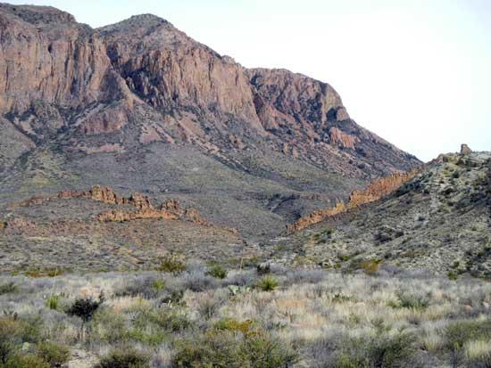 Ward Spring Trail