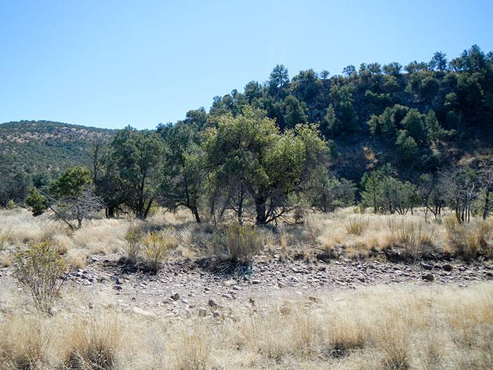 Madera Creek