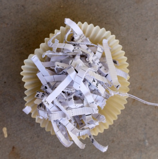 Fill cupcake liners with paper