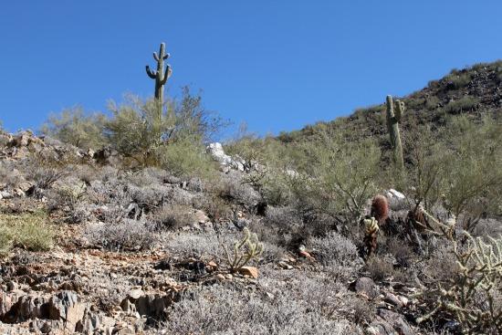 Quartz Trail Deposit