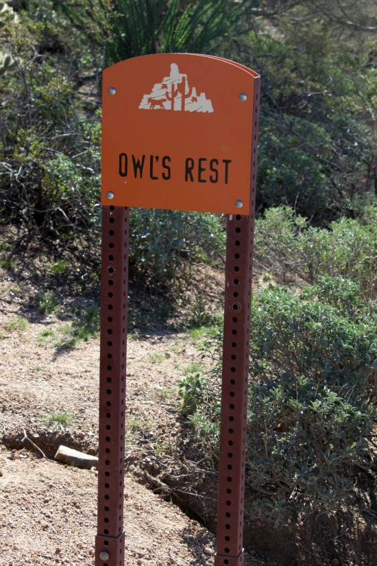 Owl's Rest