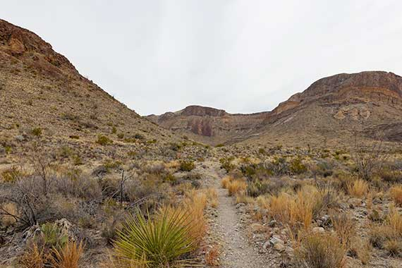 Burro Spring Trail