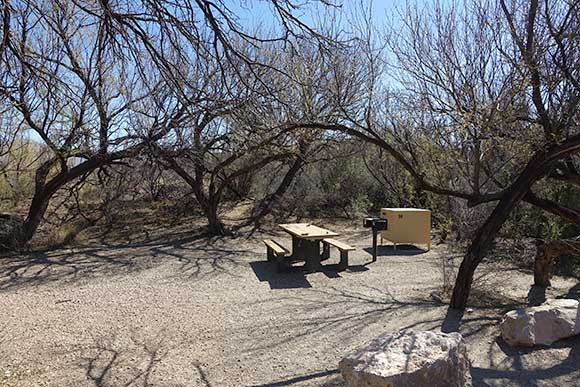 Rio Grande Village Campground No Generator Campsite