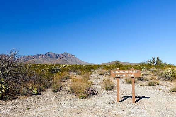 Trailhead - Chihuahuan Desert Nature Trail