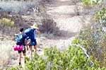 Big Bend National Park Hiking Trails