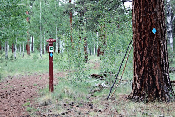 Red Tail Trail sign