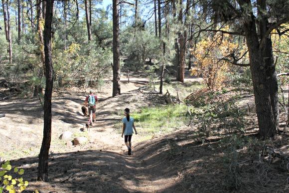 Granite Basin Recreation Area - Fall Colors