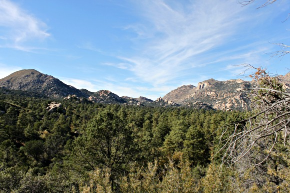 Granite Basin Recreation Area - Mountain Shot