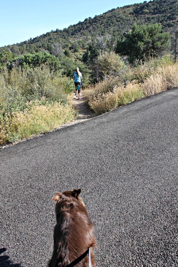Granite Basin Recreation Area - Dogs Allowed