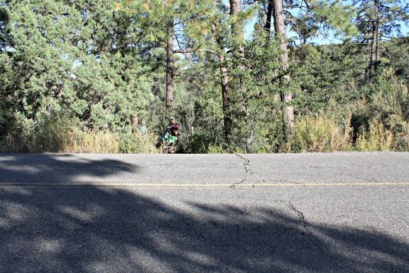 Granite Basin Recreation Area - Crossing the Road