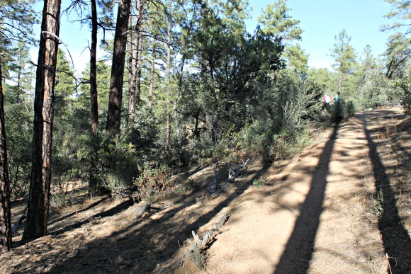 Granite Basin Recreation Area - Trail Shot