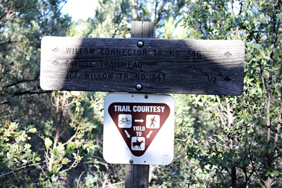 Granite Basin Recreation Area - Cayuse Trailhead Sign