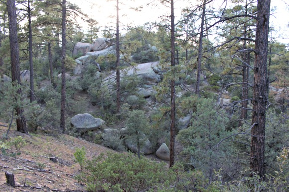 Granite Basin Recreation Area - Trail 351