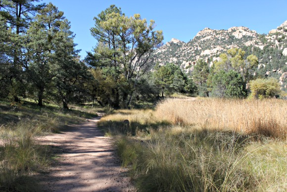 Granite Basin Recreation Area - Trail from Parking Lot