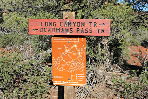 Long Canyon Trail/Deadmans Pass Trail/Mescal Trail
