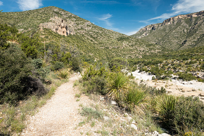 Beginning of McKittrick Canyon Trail