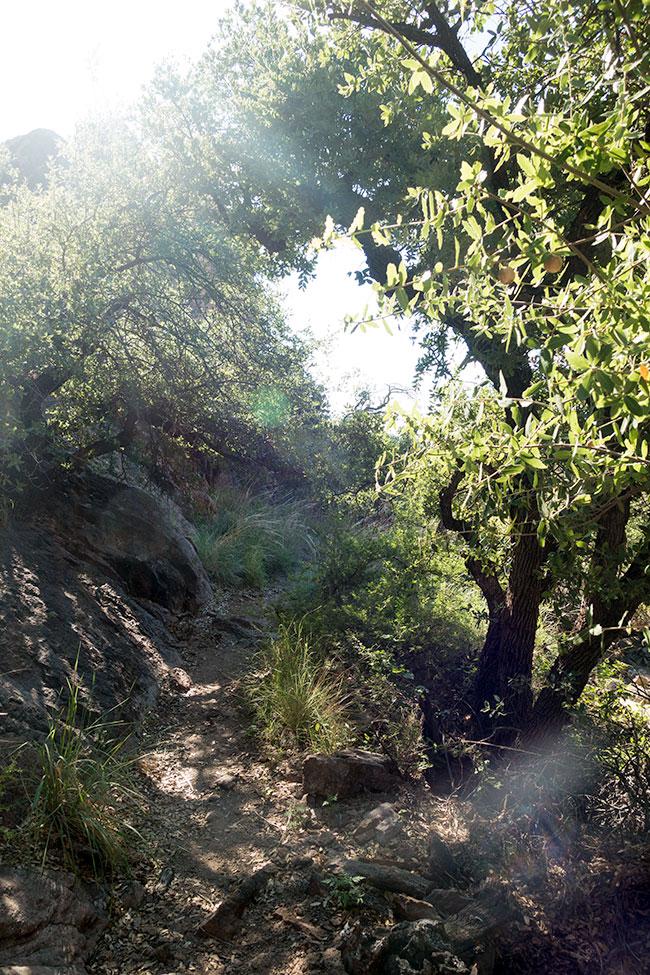 Entering Modesta Canyon